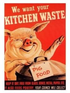 pigfood